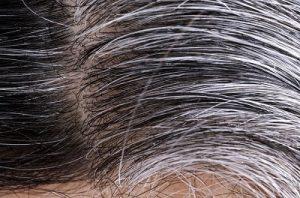 farbanje sede kose